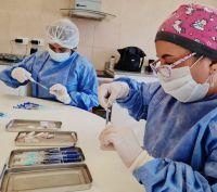"""Coronavirus en San Luis: """"Tenemos la tasa de positividad más baja desde el 25 de diciembre del año pasado"""""""