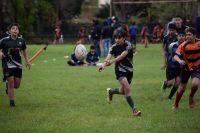 Volvió a picar la ovalada para los pibes de Herradura Rugby Club