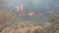 Descontrolado, el fuego avanza y jaquea las localidades de Alpa Corral, El Chacay y Las Albahacas