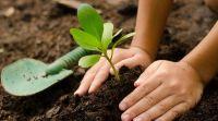 En el mes de la agroecología Villa de Merlo prepara dos actividades