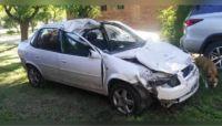 Una pareja murió tras colisionar con su auto a un caballo suelto