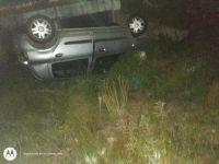Dos accidentes de tránsito por animales sueltos en Ruta 1, cerca de Papagayos