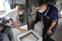 San Luis recibió este miércoles otras 6.000 dosis de Sinopharm